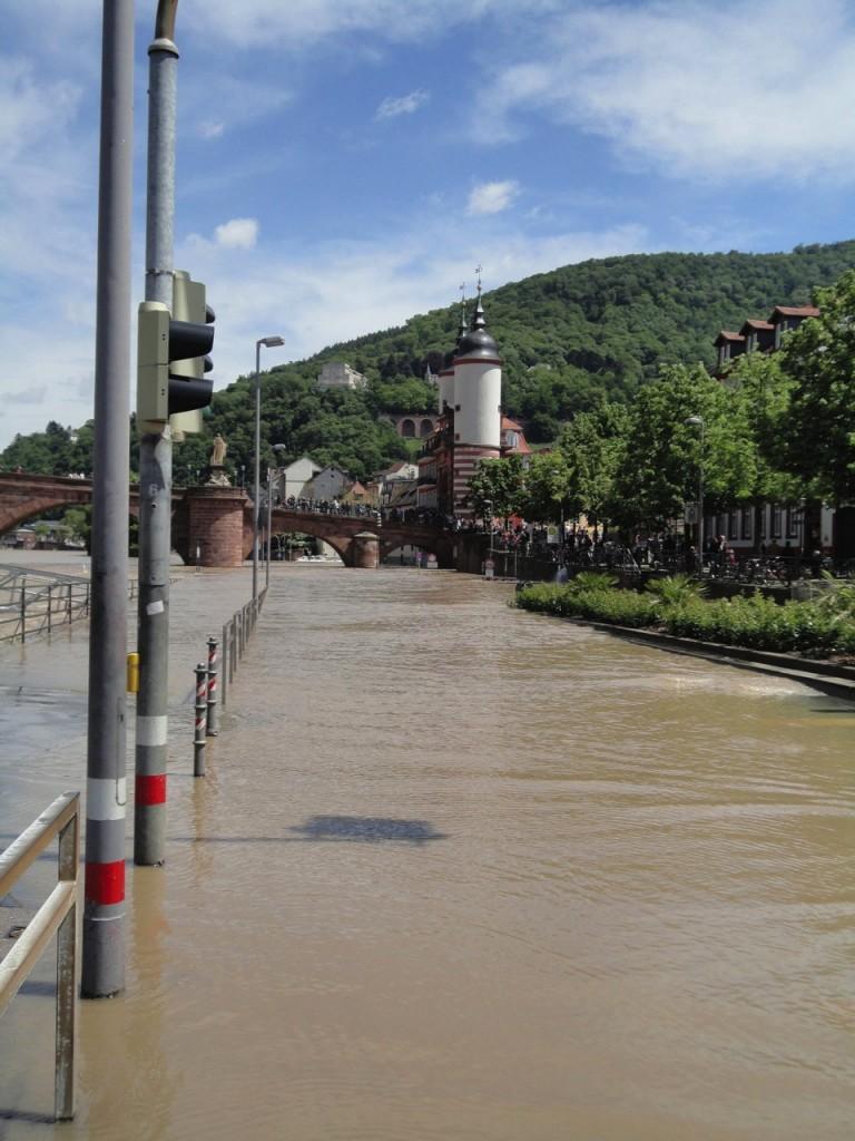 hochwasserheidelbergjuni2013b
